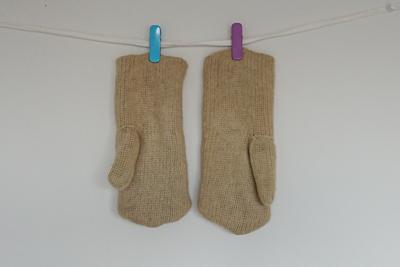 ブルーベリーの紅葉染め手袋