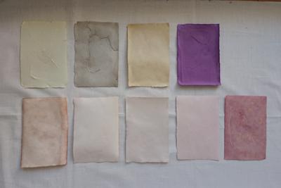 草木染めした紙