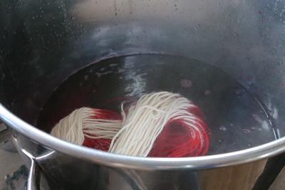 スオウの染液に毛糸投入