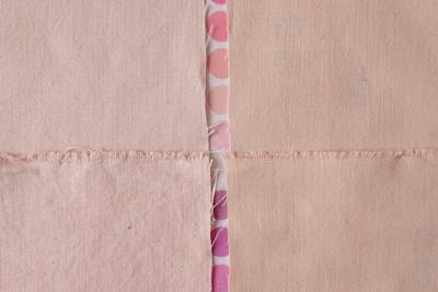 ソメイヨシノと八重桜の色比較