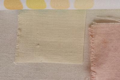 八重桜で黄色に染まった布