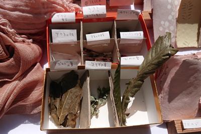 草木染めの原料植物の箱