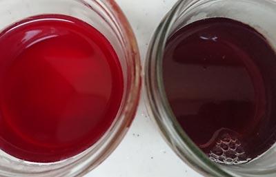 ブルーベリー染液は酸性で赤色