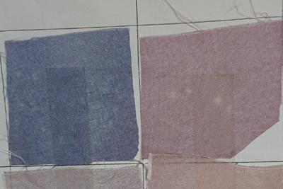 ブルーベリー染めの斑点