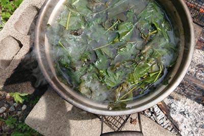 葛の葉をかまどで煮る