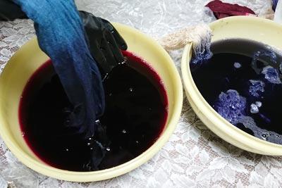ログウッド液の染色