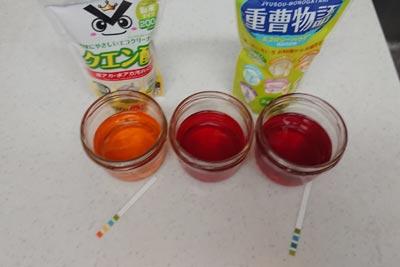 アボカド染めの酸性アルカリ性の染液