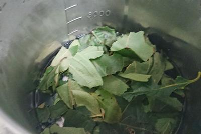 柿の葉染液抽出