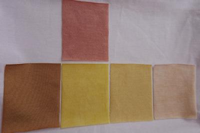 柿の枝葉で染めた布の色見本