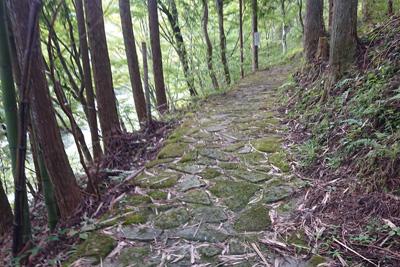 名倉川沿い遊歩道