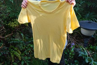 椿の葉染めのTシャツ