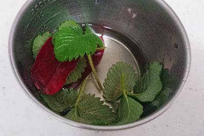 葉を酢水にひたす