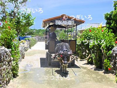 沖縄の水牛車イラスト