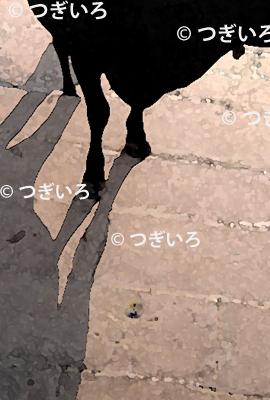 牛の蹄イラスト
