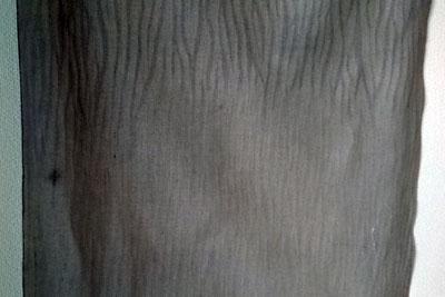 表面と内側の境目の模様