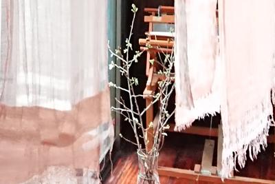 桜の枝と桜染め