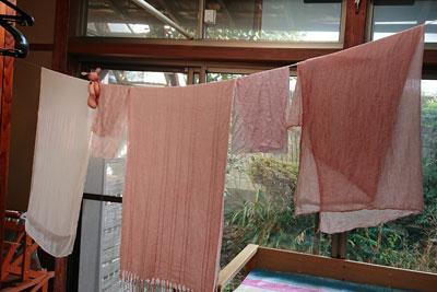 染まった桜染めの布