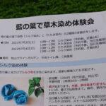 藍の葉で草木染め体験会
